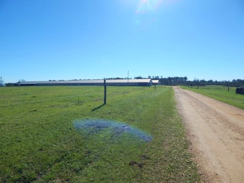 2 Breeder Houses On 10 Acres : Tylertown : Walthall County : Mississippi