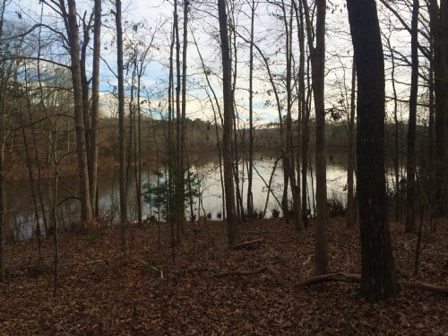 Duncan Creek Church Road Farm : Laurens : South Carolina