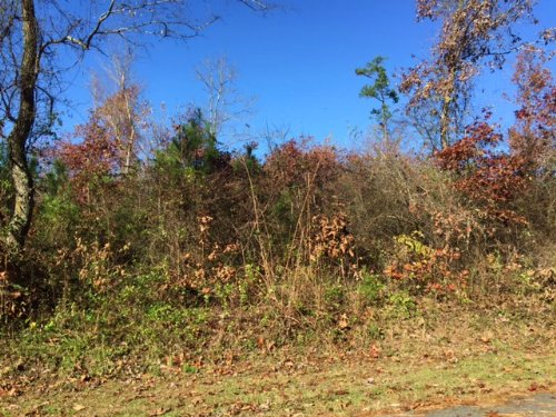 27.5 +/- Acres With 3 Mobile Homes : Adairsville : Bartow County : Georgia