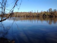 210 Acres Along Alabama River : Selma : Dallas County : Alabama