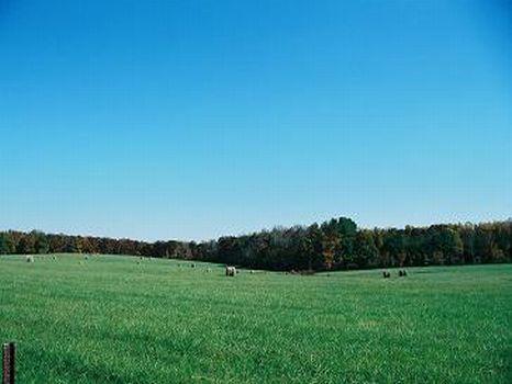Copley Creek Farm : Durham : Person County : North Carolina