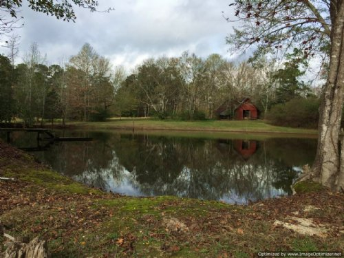200± Acres Hunting Land : Hazlehurst : Copiah County : Mississippi