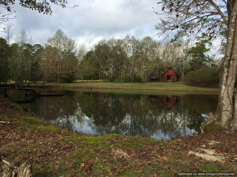 200 acres hunting land land for sale hazlehurst for Fishing camps for sale in mississippi