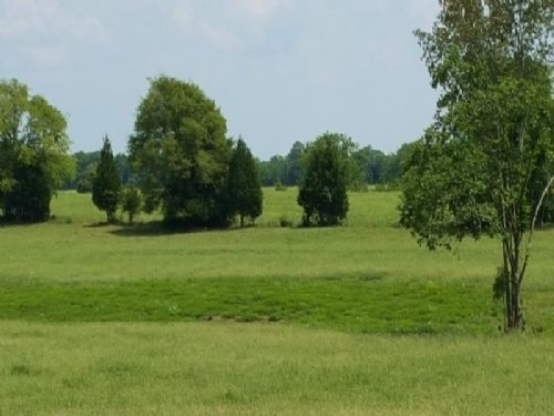 Nice Ranch Property : Demopolis : Marengo County : Alabama