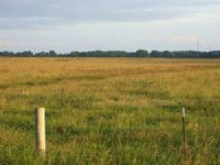 Cropland - Pasture : Marion : Perry County : Alabama