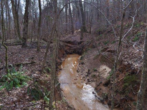 Farmington Road Tract : Greensboro : Greene County : Georgia
