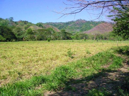 Costa Rica Ros Del Sol : Jaco : Costa Rica