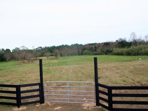 12 Acres, Live Oak Dr : Jacksonville : Duval County : Florida