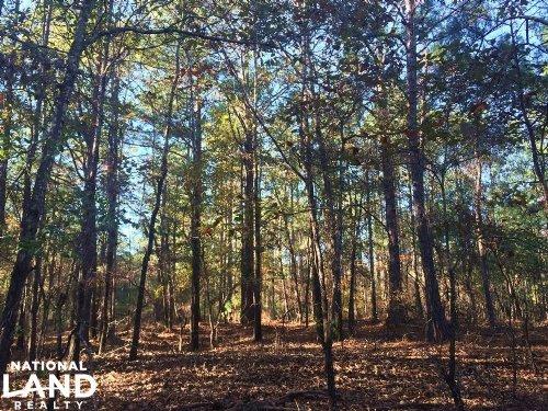 Recreational Home Site : Tallassee : Elmore County : Alabama