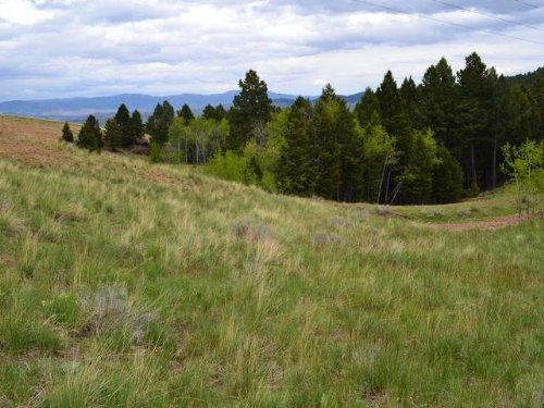 Lot 3 Lone Pine Gulch : Ramsay : Silver Bow County : Montana