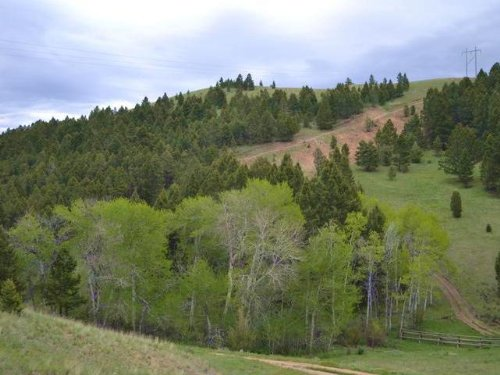 Lot 5 Lone Pine Gulch : Ramsay : Silver Bow County : Montana