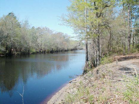 Chadwick Tract : Willmington : Pender County : North Carolina