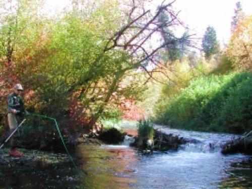 Lazy H Ranchettes : Morgan County : Utah