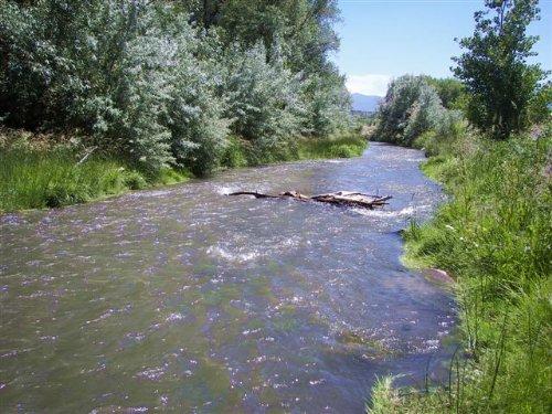 Galloping Fish : Canon City : Fremont County : Colorado