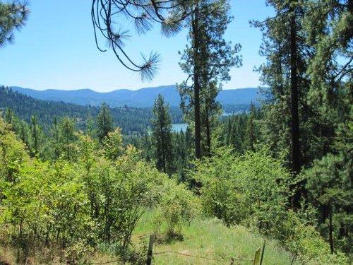Hidden Paradise : Hayden : Kootenai County : Idaho