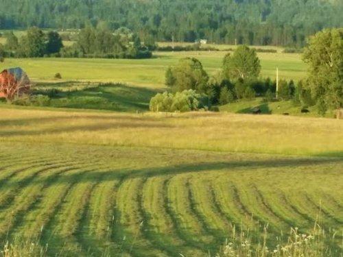 Peterson Farm & Ranch : Priest River : Bonner County : Idaho