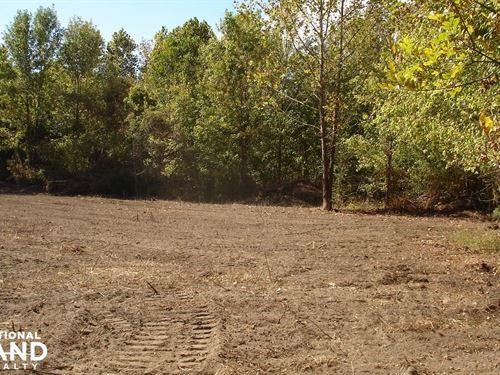 Sawyerville Hunting Land : Sawyerville : Hale County : Alabama