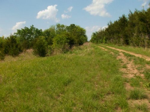 Large Recreactional Acreage : Paris : Lamar County : Texas