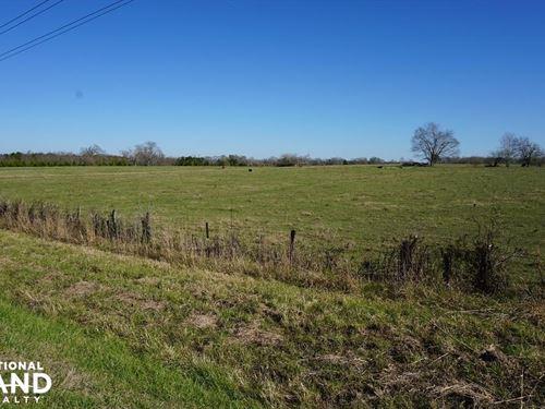 Sawyerville Pasture & Home Site : Sawyerville : Hale County : Alabama
