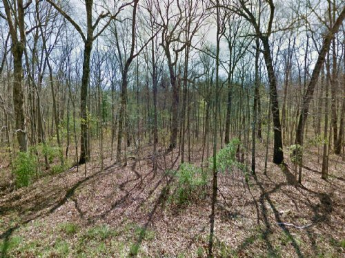 Lot For Sale : Lake Tansi : Cumberland County : Tennessee