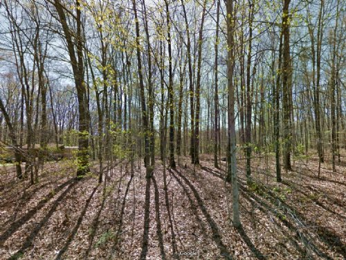 Cheap Lot For Sale : Lake Tansi : Cumberland County : Tennessee