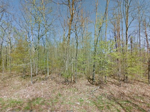 Buildable Lot For Sale : Lake Tansi : Cumberland County : Tennessee