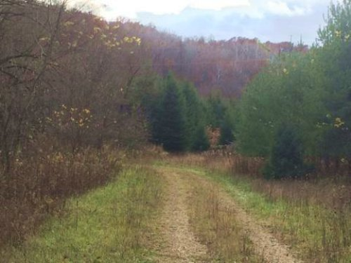 Great Tract Of Land W Small Creek : Highland : Iowa County : Wisconsin
