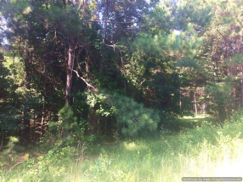 80 Ac Pasture & Rec Tract : Goodman : Madison County : Mississippi
