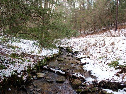15 Acres Land In Millville : Millville : Columbia County : Pennsylvania