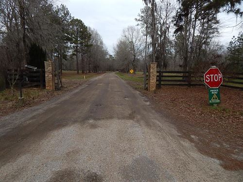 3-006 Line Creek Plantation Lot E : Cecil : Montgomery County : Alabama