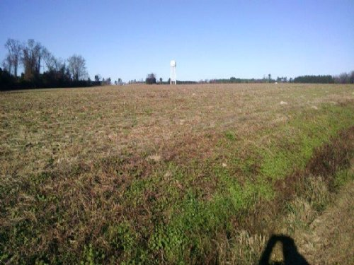 Nice Farm Or Residential Property : Fairmont : Robeson County : North Carolina