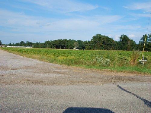 20 Acre Farm Near St. Pauls : St. Pauls : Robeson County : North Carolina