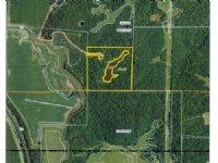 42 Acres M/l With Pond & Cabin : St. Patrick : Clark County : Missouri