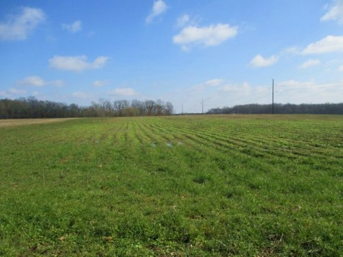 69 Acres In Noxubee County : Shuqualak : Noxubee County : Mississippi