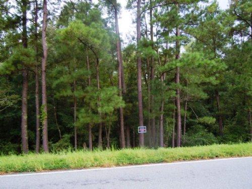Glenns Branch Tract 2 : Statesboro : Bulloch County : Georgia