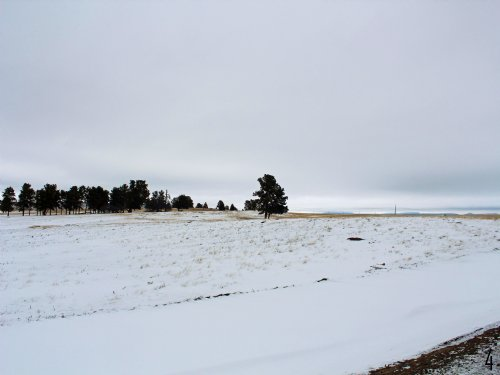 Tract 4 Hartland Ranches : Upton : Weston County : Wyoming