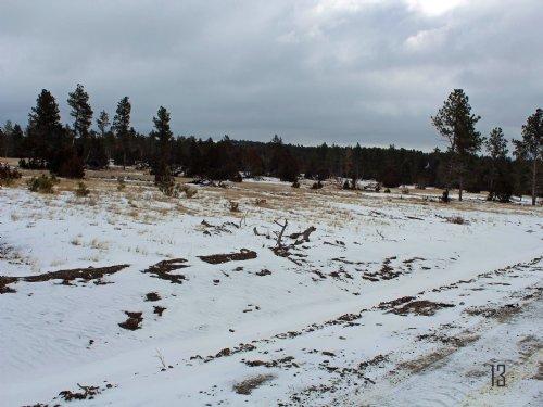 Tract 13 Hartland Ranches : Upton : Weston County : Wyoming