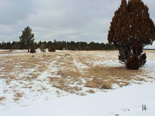 Tract 14 Hartland Ranches : Upton : Weston County : Wyoming