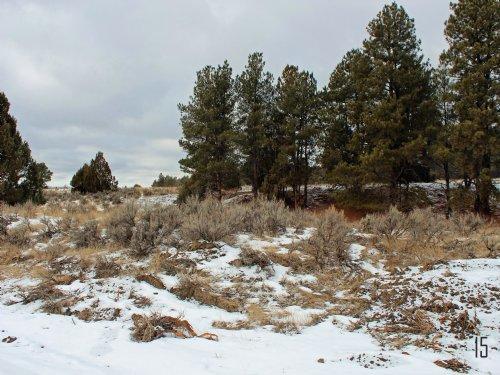 Tract 15 Hartland Ranches : Upton : Weston County : Wyoming