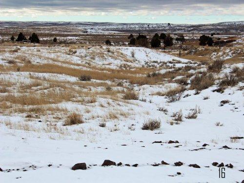 Tract 16 Hartland Ranches : Upton : Weston County : Wyoming
