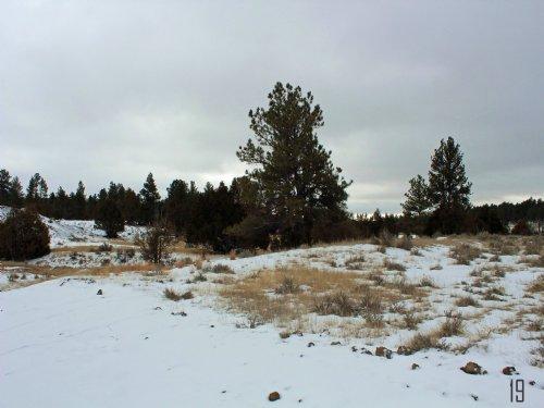 Tract 19 Hartland Ranches : Upton : Weston County : Wyoming