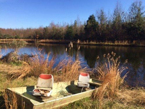 Nice Pond, Homesite + Hunting : Macon : Bibb County : Georgia