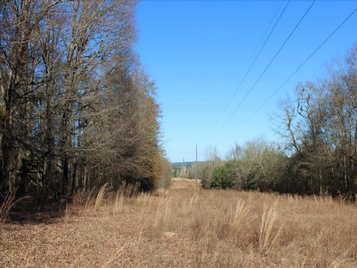 Recreational Property Or Homesite : Buena Vista : Marion County : Georgia