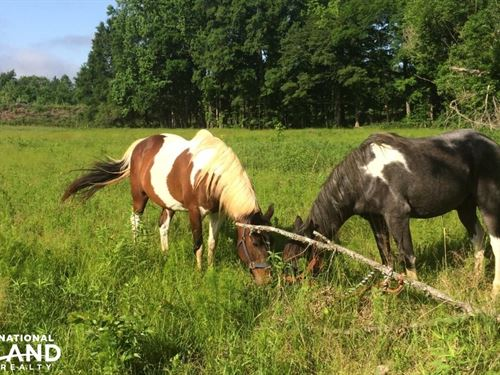 Hwy 5 Recreational Farm : Smyrna : York County : South Carolina