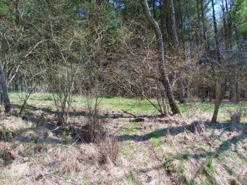 Residential Lot Near New River : Independence : Grayson County : Virginia