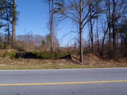 Reduced Noah's Ark Road : Stockbridge : Henry County : Georgia