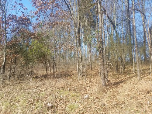 Building Lot In Lake Access Subdvsn : Mooresburg : Hawkins County : Tennessee
