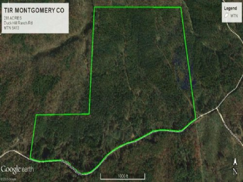 Timberland Investment Property : Duck Hill : Montgomery County : Mississippi