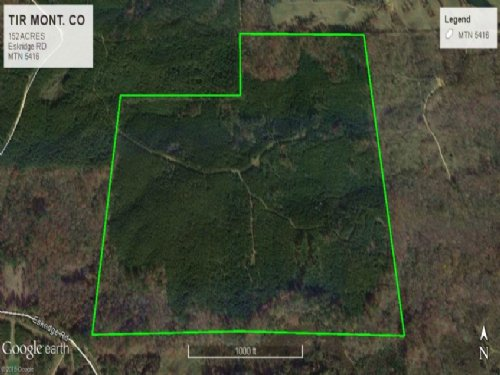 Prime Timberland Hunting Investment : Duck Hill : Montgomery County : Mississippi