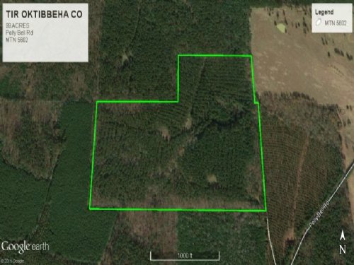 Hunting Recreational Land For Sale : Pheba : Oktibbeha County : Mississippi